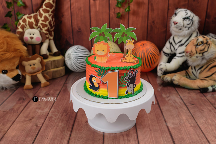 Bolo para Smash cake tema safari em estúdio para menino em Brasília.jpg