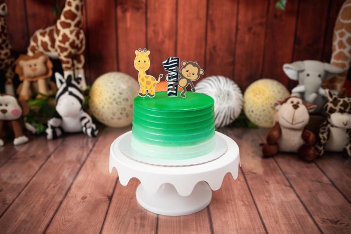 Bolo para smash the cake tema Safari menino Brasília
