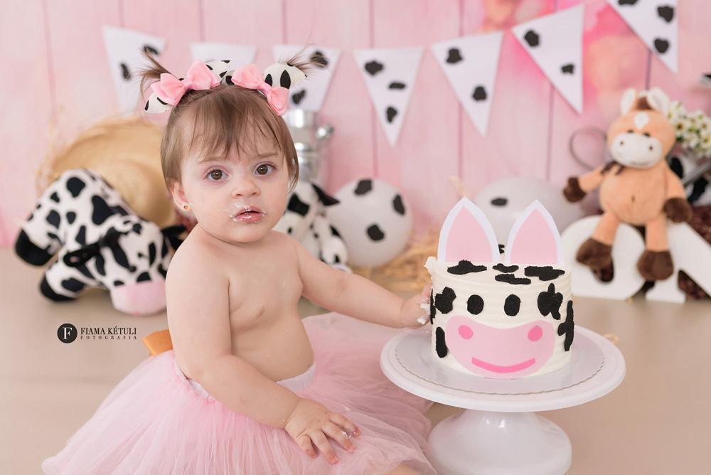 Smash the cake Fazendinha rosa em estúdio Brasília