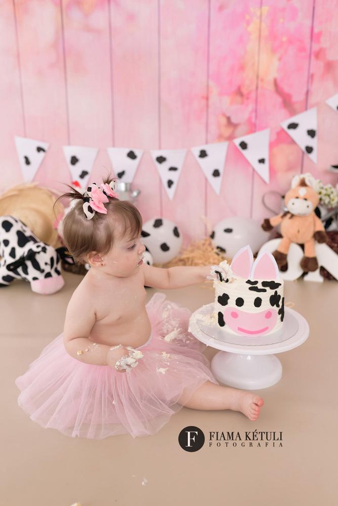 Ensaio de 1 ano com bolo Fazendinha rosa em Brasília